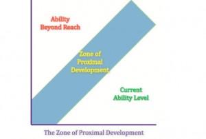 Zone of Proxmial development