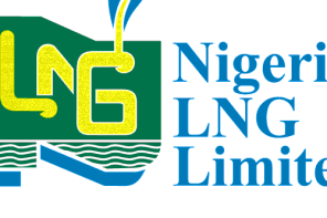 NLNG Undergraduate Scholarship for Nigerian Students