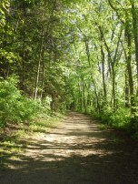 Hiking~
