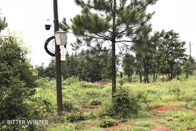 Camera at Bishop Zeng's grave