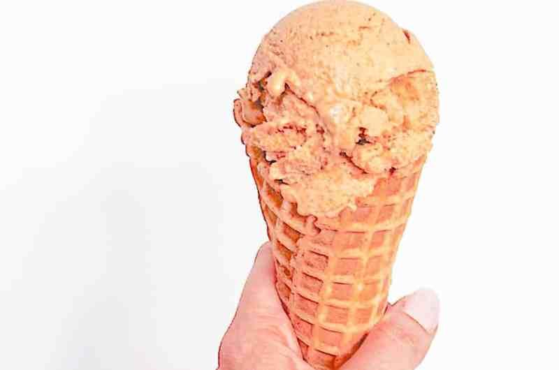Pumpkin protein ice cream