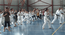 karate harlau