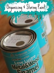 Organizing & Storing Paint