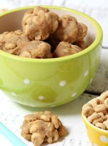 Homemade Peanut Butter Cheerio Dog Treats