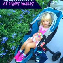 Do I Need a Stroller for My Preschooler at Disney World?