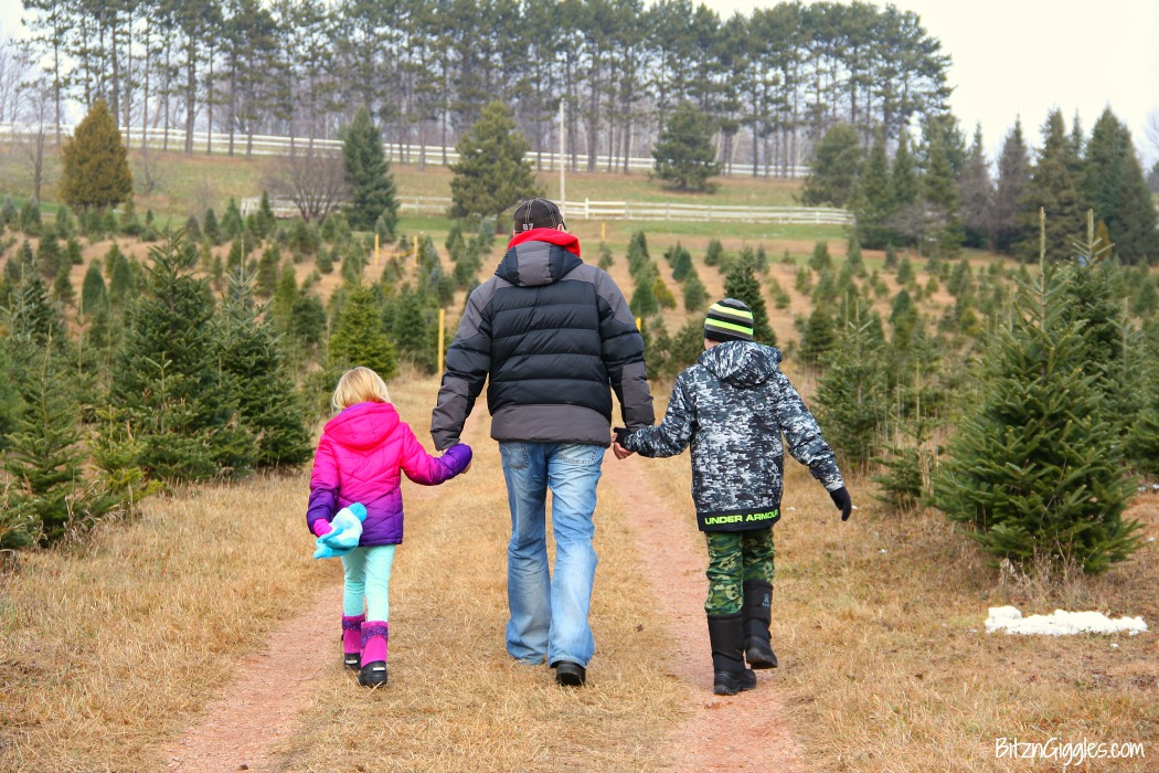 family-going-to-pick-out-a-christmas-tree-color