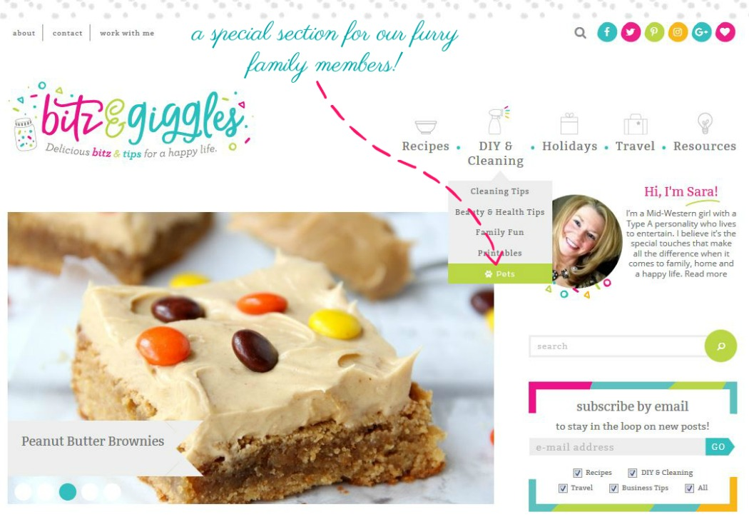 Bitz and Giggles Website Redesign