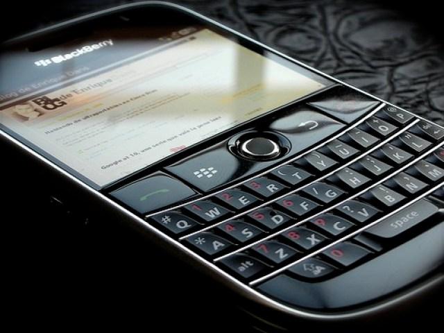 blackberry photo