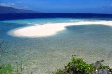 full-day-tour-to-sumilon-island-from-cebu-city-in-cebu-339911