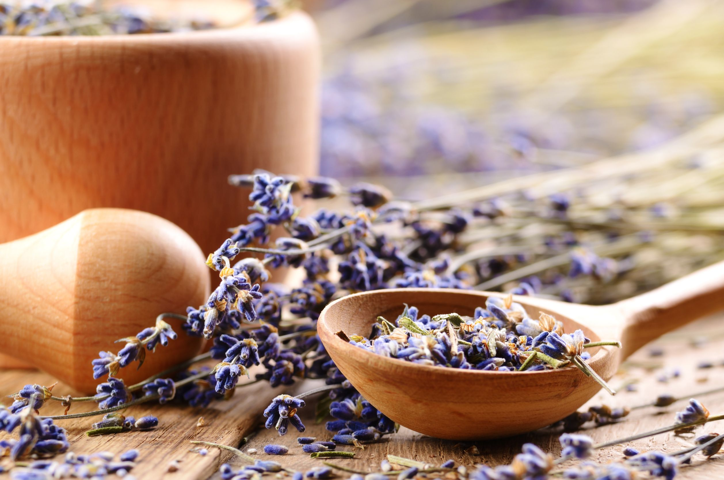 16480750 - pestle and mortar with lavender flowers on the oak table