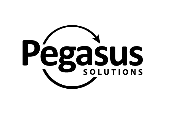 Pegasus Names Scott Gibson Chief Executive Officer