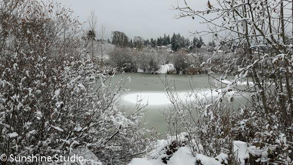 winter-wonderland-2016-1