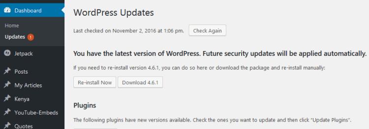 WP Core has no update