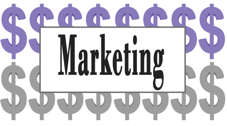 Top 7 Marketing Courses