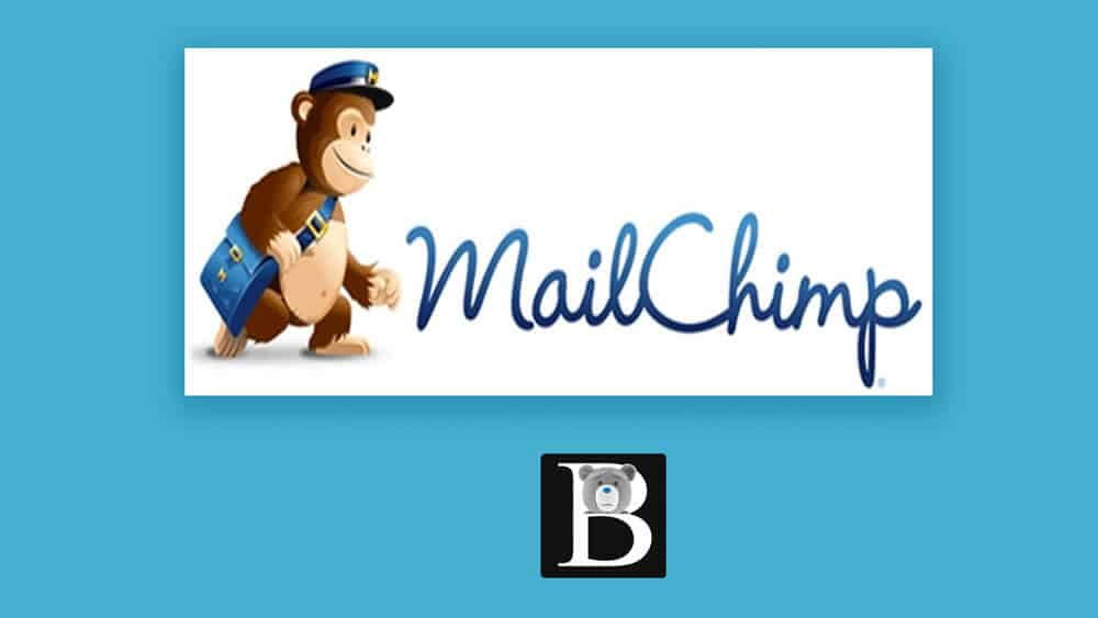 Mailchimp course by bizanosa signup
