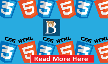 Learn HTML and CSS on Udemy - By Bizanosa