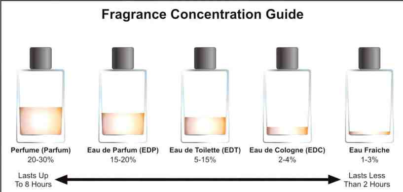 fragrance-concentration-bizarbin_com