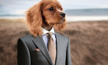 To Stay Stress-Free after Your Vacation, Copy a Dog's Mindset