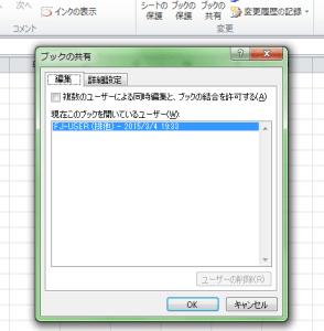 Excel_共有_2