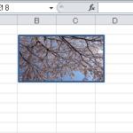【エクセルの基本】文書内に画像を貼り付ける方法2つとその手順