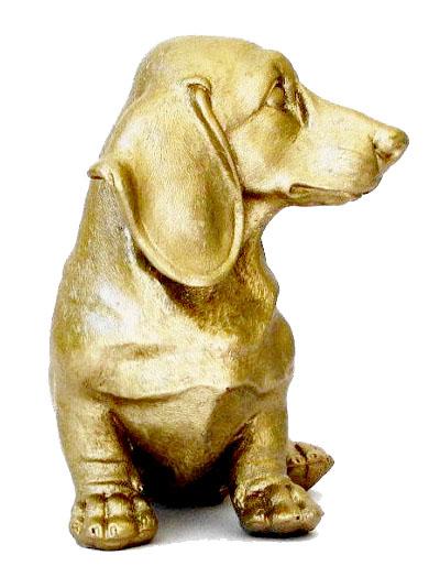 gold dog