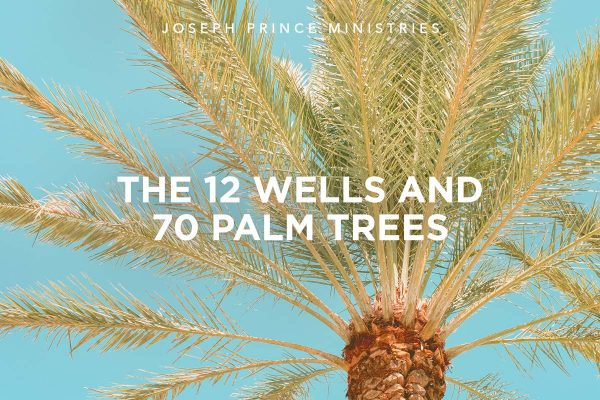 The 12 wells and 70 palm trees