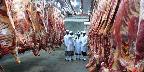 KMC Beef Farmers