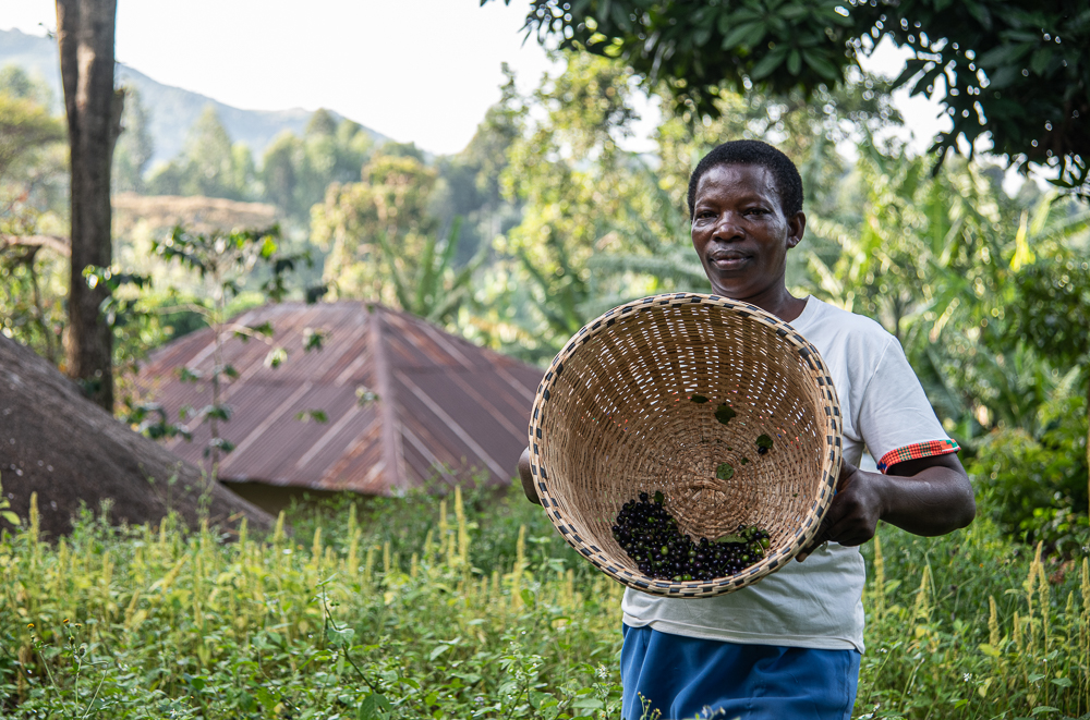 Elizabeth Omusiele shows the diverse seeds she is growing on her farm with support from the Alliance and partners, including funders Biovision Foundation Switzerland and the Agriculture for Nutrition and health - Bizna Kenya