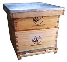 Langstroth beehive - Bizna Kenya