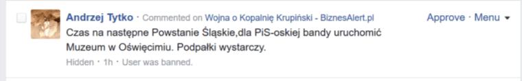 Komentarz pod tekstem BiznesAlert.pl. Fot.: BiznesAlert.pl