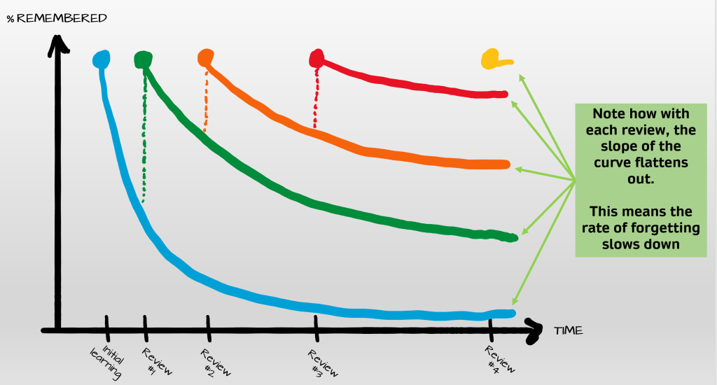 forgetting curve chart