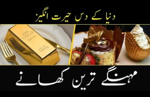 TOP10 Most Expensive Food In The World l Bizon TV