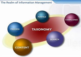 tax taxonomy_diagram