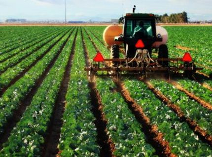 Nigeria's Top 10 Agricultural Products