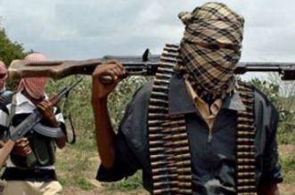 Turkey's Weapons Supply to Boko Haram