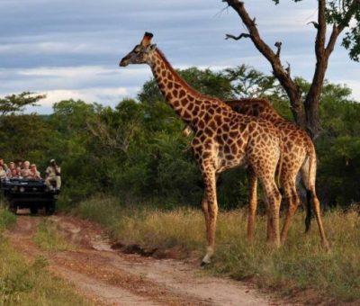 World Tourism Day: FG Tells States To Use Tourism To Drive Economic Growth