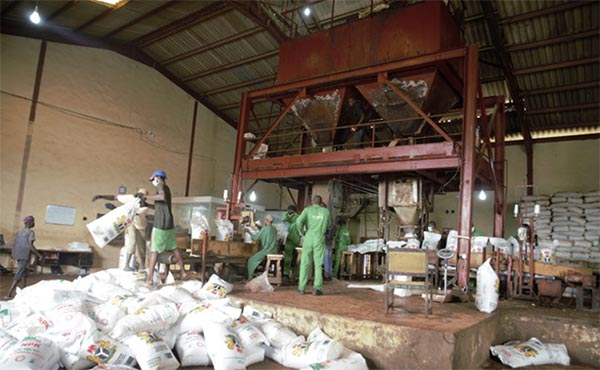 FG Saves N133bn On Fertilizer Subsidy
