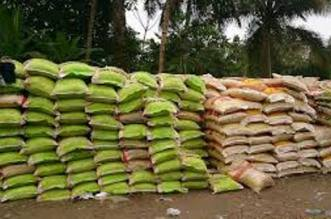 Nigeria's Rice Production