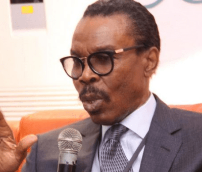 Continued Payment Of Petrol Subsidy Will Not Encourage Investors - Rewane