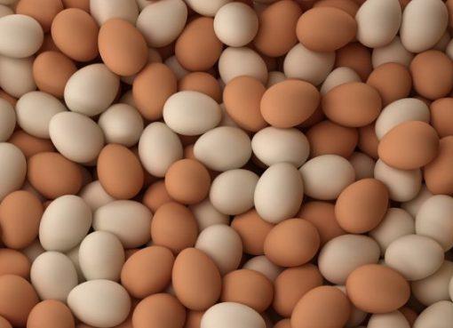 Benefits Of Egg Consumption