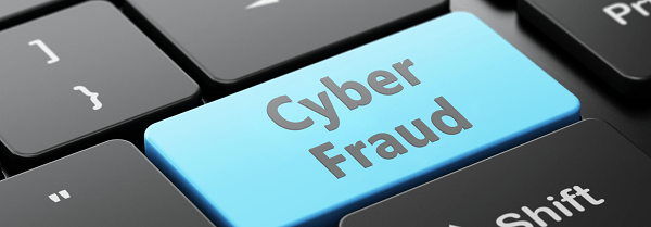 Image result for cyber fraud
