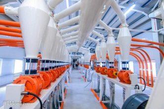 A'Ibom State Govt Unveils Kings Flour