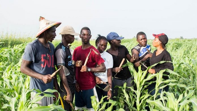 The Lagos State Government says it will begin the Year 2020 Agricultural Youth Empowerment Scheme (Agric-YES) Summer School Programme for students of public Senior Secondary Schools across the Six Education Districts on Aug. 17. The State Acting Commissioner for Agriculture, Ms. Abisola Olusanya stated this on Wednesday in Lagos,. She said that the two-week programme […]