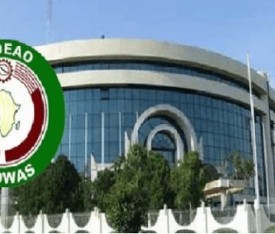 'Social Media Is Misused, Used To Destroy Gains' - ECOWAS