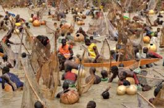 Return of the Argungu Agricultural and Fishing Festival