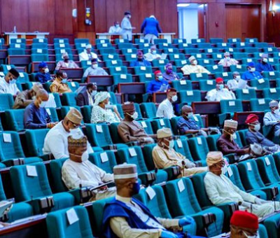 House of Reps Pass NDDC's ₦453.2 billion Budget