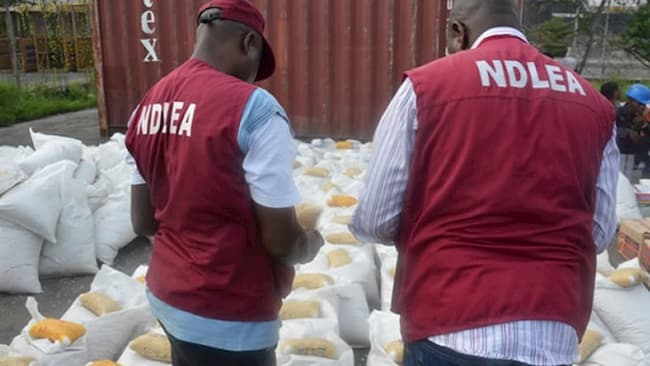 More Than 15 Million Nigerians Abuse Drugs - NDLEA