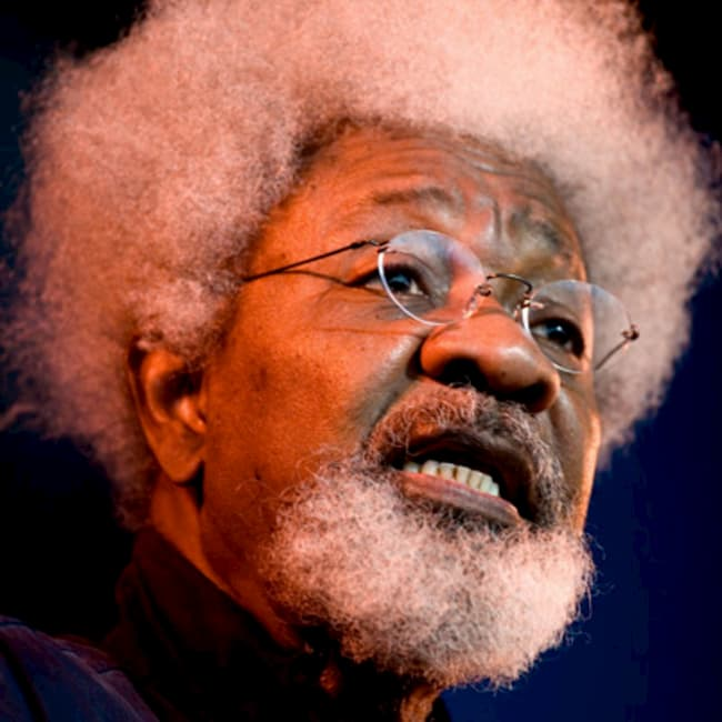 We Cannot Permit Ourselves To Continue In This Fashion - Soyinka On Abductions