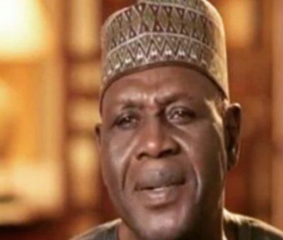 Kingibe: The Unity Of Nigeria Is Negotiable