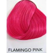 flamingo pink van lariche directions